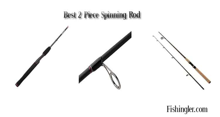 Best 2 Piece Spinning Rod