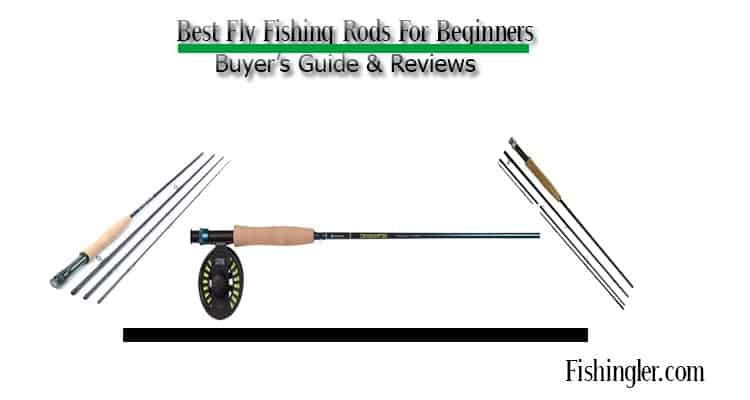 best fly fishing rods for beginners