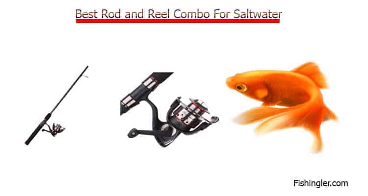 Best Rod and Reel Combo For Saltwater